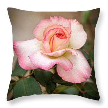 The Rose Throw Pillow by Janice Rae Pariza