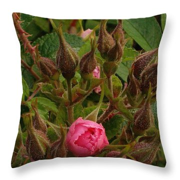 Throw Pillow featuring the photograph The Rose by Michael Dohnalek