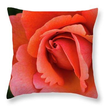 The Rose Throw Pillow