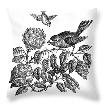 The Roses And The Sparrow Throw Pillow