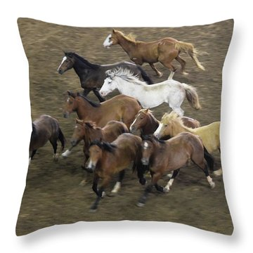 The Roundup Throw Pillow