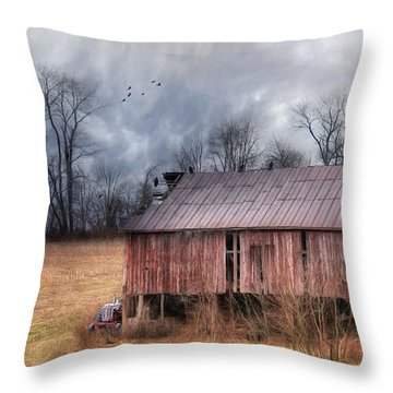 The Rural Curators Throw Pillow by Lori Deiter