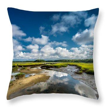 The Salt Marshes, Wellfleet Ma Throw Pillow by Dapixara Art