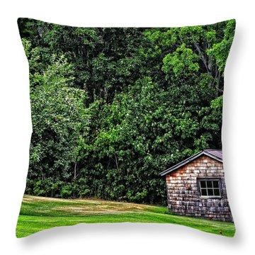 The Sauna By Sharon Cummings Throw Pillow