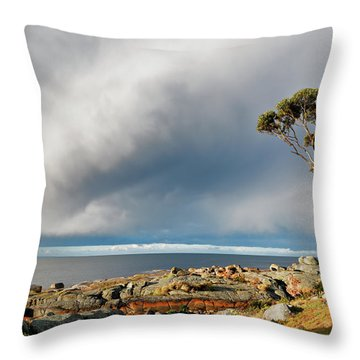 The Sea And The Sky Throw Pillow