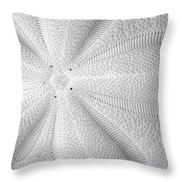 The Sea Biscuit Throw Pillow
