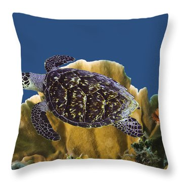 Throw Pillow featuring the photograph The Sea Turtle by Paula Porterfield-Izzo