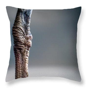 The Seagulls Knee  Throw Pillow by Bob Orsillo