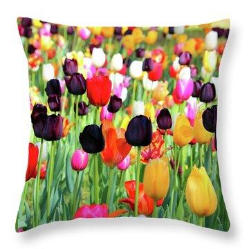 The Season Of Tulips Throw Pillow