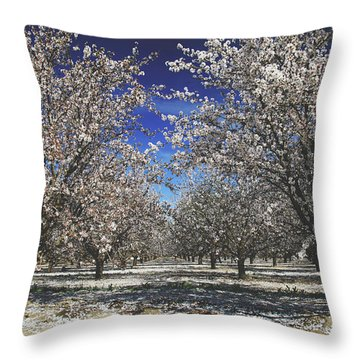 Throw Pillow featuring the photograph The Season Of Us by Laurie Search