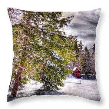 Throw Pillow featuring the photograph The Secluded Boathouse by David Patterson