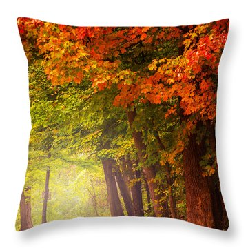 The Secret Place Throw Pillow by Rima Biswas