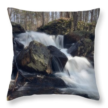 The Secret Waterfall 1 Throw Pillow