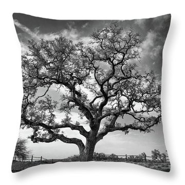 The Sentinel Bw Throw Pillow