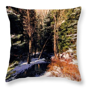 Throw Pillow featuring the photograph The Sentinels 1 by Kate Word