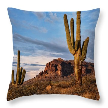 Throw Pillow featuring the photograph The Sentinels Of The Supes In Color  by Saija Lehtonen