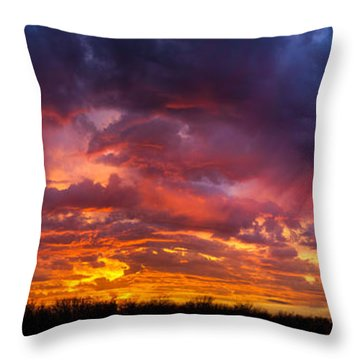 Throw Pillow featuring the photograph The Sentinel's Surprise by Jeff Phillippi