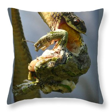 The Serpent And The Frog Throw Pillow