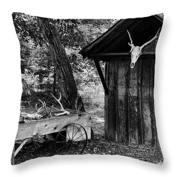 The Shack Throw Pillow by Wade Courtney