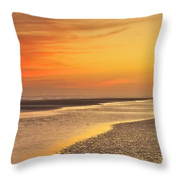 The Shallows Throw Pillow by Phill Doherty