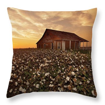 The Sharecropper Shack Throw Pillow