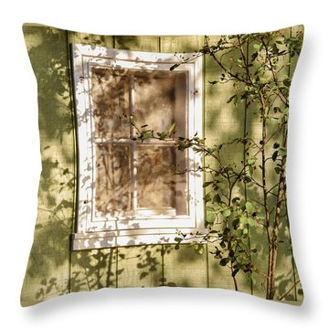 The Shed Window Throw Pillow