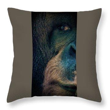 The Shy Orangutan Throw Pillow by Martin Newman