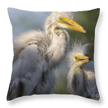 The Siblings Throw Pillow