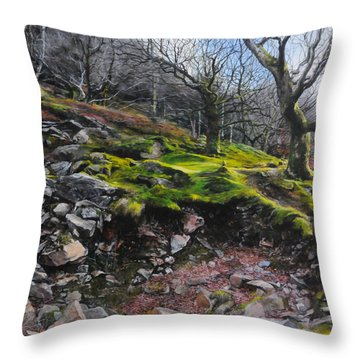 The Side Of The Valley Throw Pillow