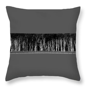 Throw Pillow featuring the photograph The Silence Of Witnesses by Steven Huszar