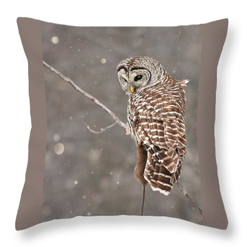The Silent Hunter Throw Pillow