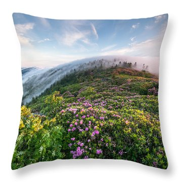 The Silky Embrace Of The Roan Highlands Throw Pillow