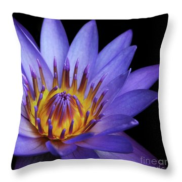 The Singular Embrace Throw Pillow by Sharon Mau