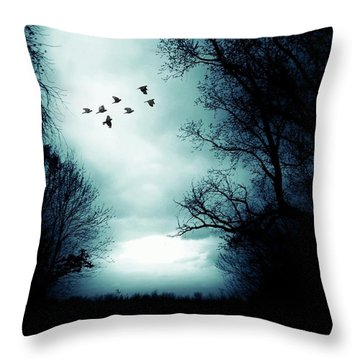 The Skies Hold Many Secrets Known Only To A Few Throw Pillow