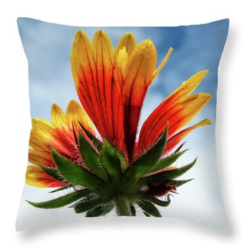 Throw Pillow featuring the photograph The Sky Is The Limit by Louise Lindsay