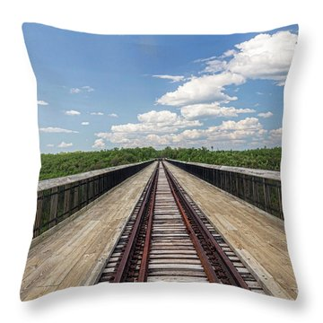 Throw Pillow featuring the photograph The Skywalk by Jim Lepard