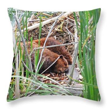 The Sleeping Beavers Throw Pillow