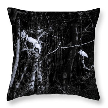 The Sleeping Quaters Throw Pillow