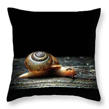 The Small Things Throw Pillow by Jessica Brawley