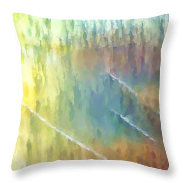 The Smell Of Rain Throw Pillow by Tom Druin