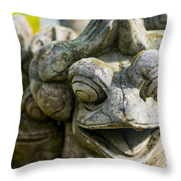 the Smiling Frog Throw Pillow