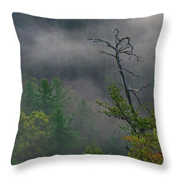 The Snag Throw Pillow