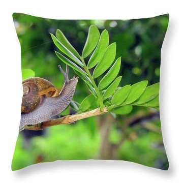 The Snail Throw Pillow