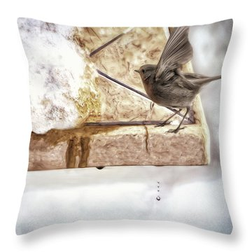 Throw Pillow featuring the photograph The Snow Melts by Pennie  McCracken