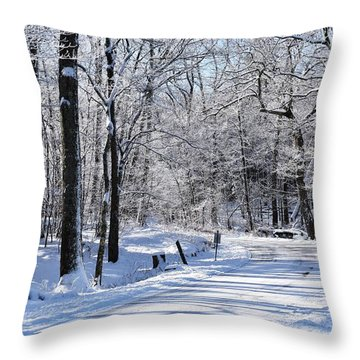 The Snowy Road 1 Throw Pillow