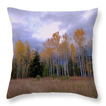 The  Song Of The Aspens 2 Throw Pillow