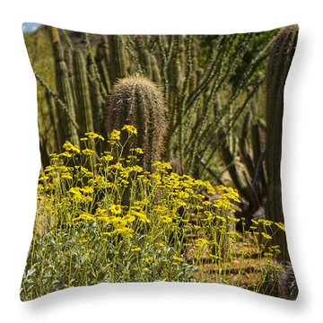The Song Of The Sonoran Desert Throw Pillow