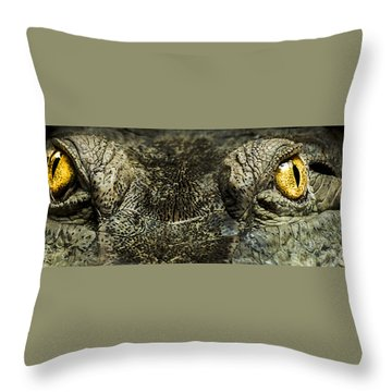 The Soul Searcher Throw Pillow by Paul Neville