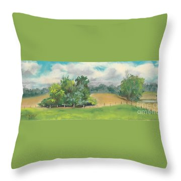 The South Field Throw Pillow by Terri  Meyer