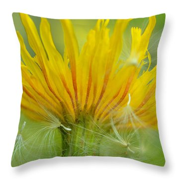 The Sow And Silk Throw Pillow